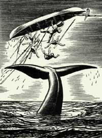 kent-whale-wreck.jpg
