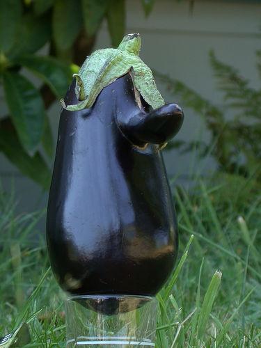 nixon-eggplant-two.jpg