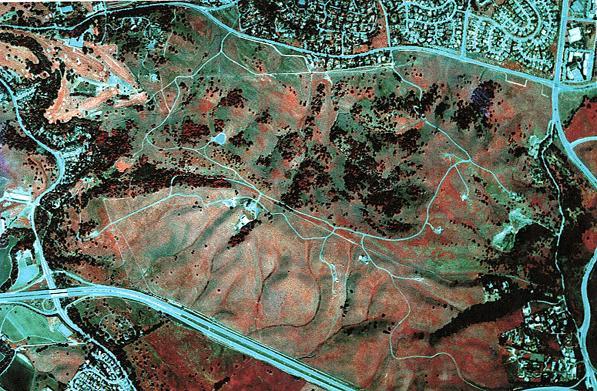 reagan-stanford-foothills.jpg