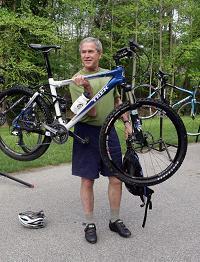 bush-bike.jpg
