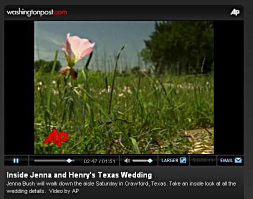 bush-wedding-thistle.JPG