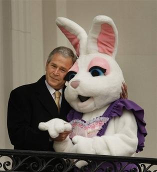 bush-bunny.jpg